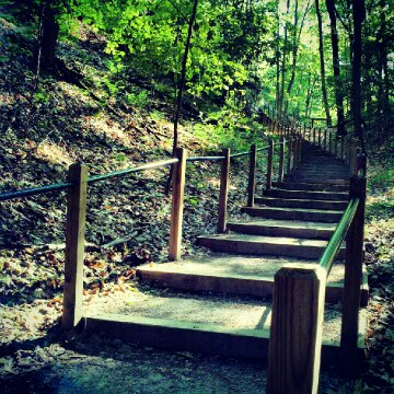 Rosy Mound Natural Area Stairs - Grand Haven Michigan