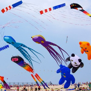 Great Lakes Kite Fest. Photo: MACkite