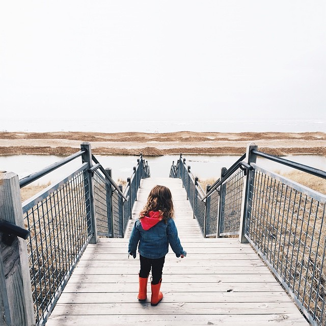Early Spring Hike at Rosy Mound Natural Area. Photo credti: Instagramer @janelledarnell