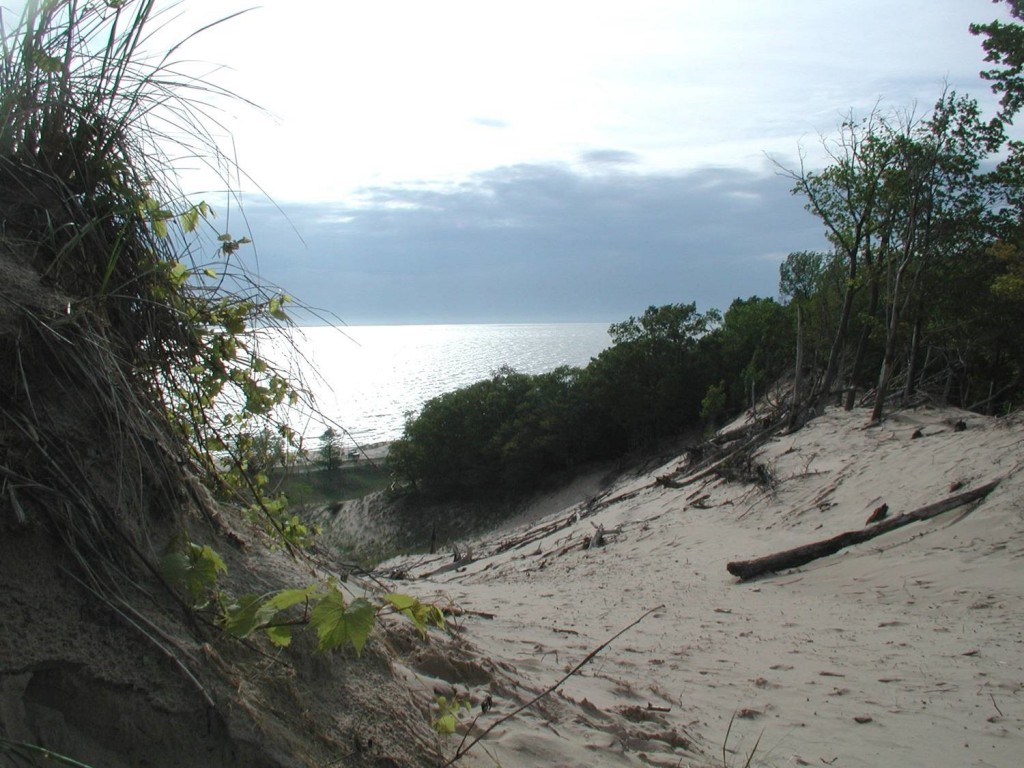 North Ottawa Dunes - Ferrysburg, Michigan. Photo courtesy of Ottawa County Parks