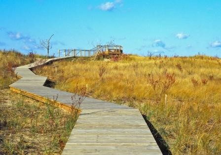 Rosy Mound Natural Area - Grand Haven, Michigan. Photo Courtesy of Ottawa County Parks.