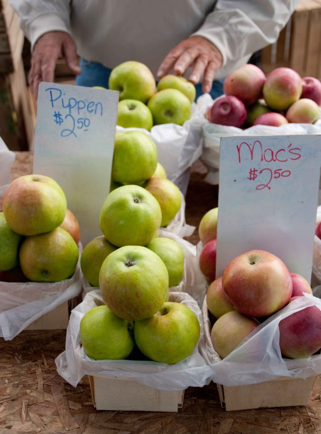 Grand Haven Michigan Farmers Markets - Photo Marci Cisneros