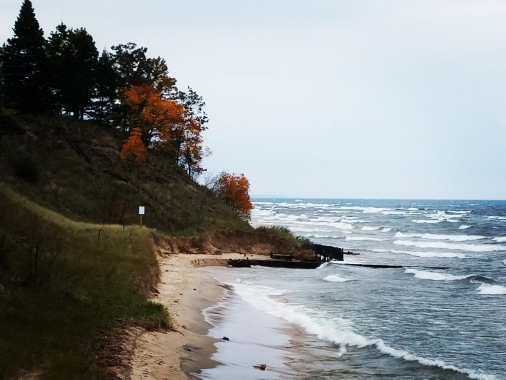 Angela Schmoekel - Fall in the Grand Haven area