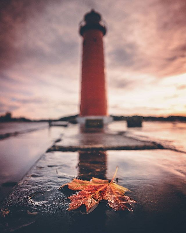 Nick Ford - Fall in the Grand Haven Michigan Area